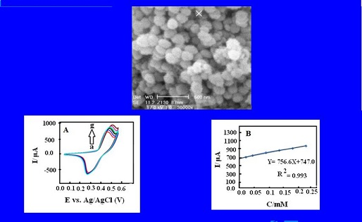 Electrocatalytic Oxidation of Cefixime at the Surface of Modified Carbon Paste Electrode with Synthesized Nano Zeolite