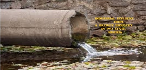 Physico-Chemical Parameters of Industrial Effluents from a Brewery Industry in Imo State, Nigeria
