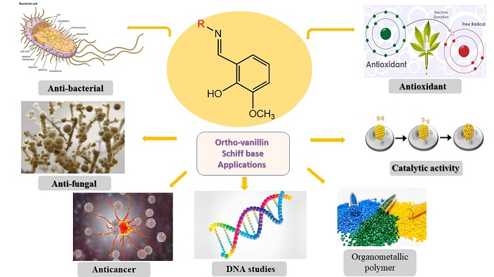 Importance of the Applicability of O-Vanillin Schiff Base Complexes: Review