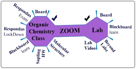 A Potential Package for Organic Chemistry Remote Teaching