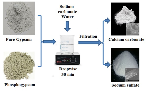 Comparative Study of the Transformation of Phosphogypsum and Pure Gypsum into Valuables Products